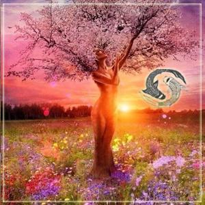 http://templeofwisdom.ru/uploads/images/niyvtCs.png